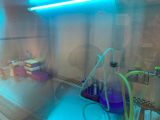 a flask sits inside a laboratory hood space illuminated by UV light