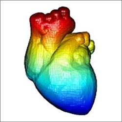 multi-colored illustration of the human heart