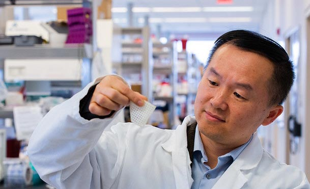a man in a white lab coat examines a small square of a biomaterial in a laboratory